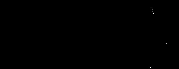 LOGO-transparent-600px-144dpi (1)